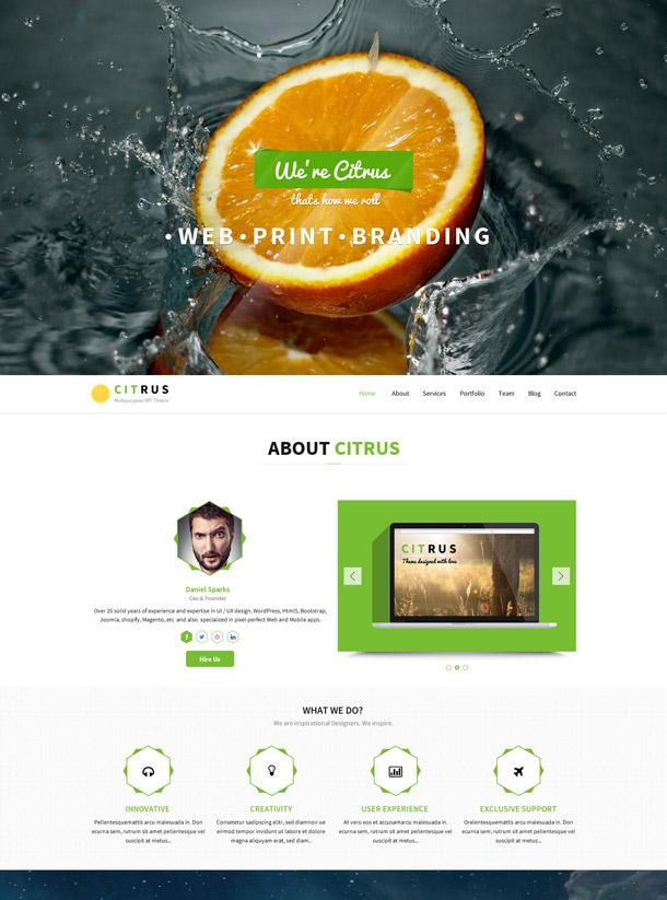 Citrus – One Page Parallax Portfolio