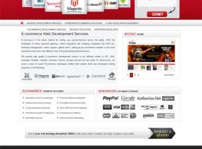www.ecommerce-webdeveloper.com