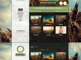 themeforest.net/item/adorable-clean-and-responsive-wordpress-theme/full_screen_preview/2938602