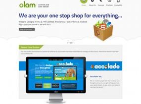 olamsolutions.com