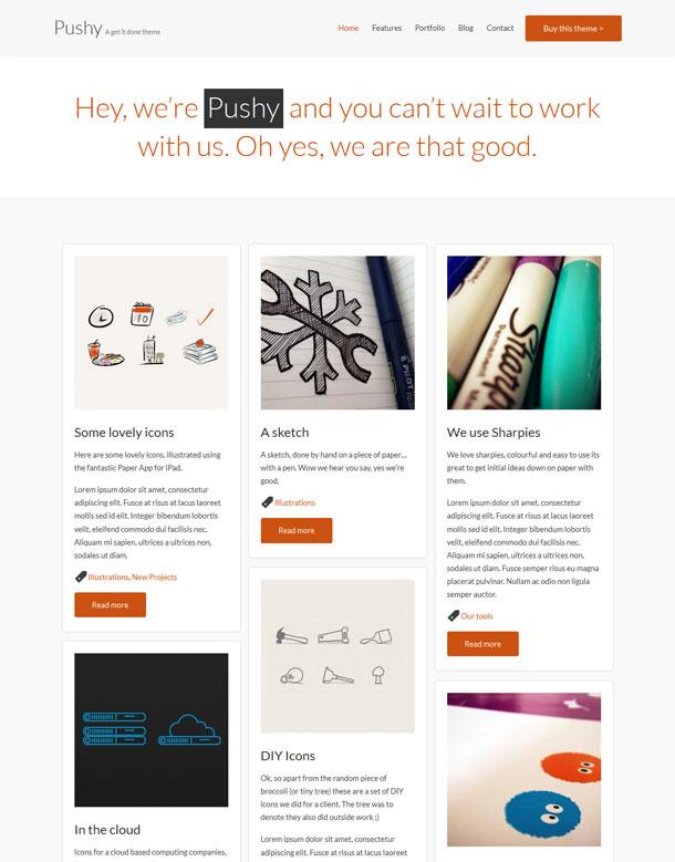 www.meanthemes.com/theme/pushy