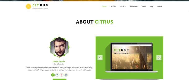 bit.ly/Citrus-Template